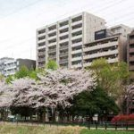 桜並木越し北西側外観